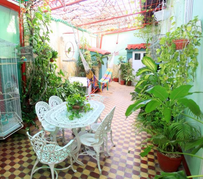 Inner courtyard with a hammock. Casa de Sra Olga Rivera in Santa Clara. Book it here: https://www.soulidays.com/en/house/Casa+Sra.+Olga+Rivera+-+Habitaci%C3%B3n+1-52573?numberOfGuests=2